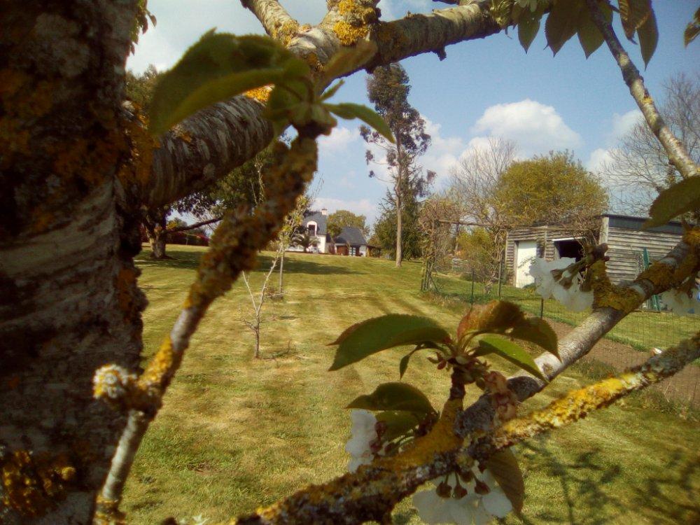 Aire camping-car à Locunolé (29310) - Photo 6